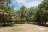 Salalah Garden