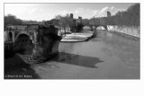 Ponte Rotto e l'Isola Tiberina