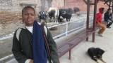 NEPAL Villes - Monuments - Katmandou 22 mars:31mars2014 - 014.jpg