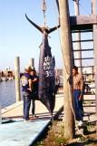 Cape Hatteras Fishing