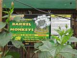 IMG_4672.BarrelMonkeys-eh.jpg