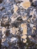 Wall abstract - El Morro