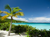 Virgin Islands National Park, St. John, USVI