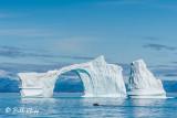 Iceberg Arch, Western Greenland  2