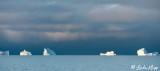 Icebergs, Ilulissat Disko Bay  6