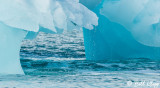 Icebergs, Philpots Island  1