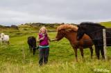 Westman Islands, Horses
