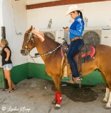 Cuban Rodeo  8