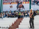 Cuban Rodeo  14