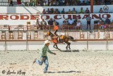 Trick Riding, Cuban Rodeo  3