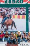 Cuban Rodeo  17