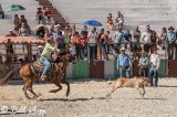 Calf Roping, Cuban Rodeo 4