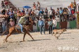 Calf Roping, Cuban Rodeo 5