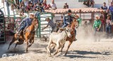 Steer-tailing, Cuban Rodeo  1