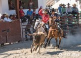 Steer-tailing, Cuban Rodeo  2