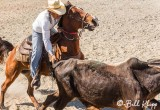 Steer-tailing, Cuban Rodeo  4