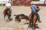 Steer-tailing, Cuban Rodeo  6