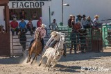 Steer-tailing, Cuban Rodeo  7