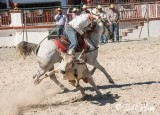 Steer-tailing, Cuban Rodeo  10