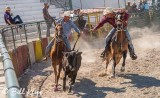 Steer-tailing, Cuban Rodeo  12