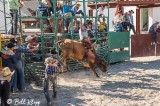 Bull Riding, Cuban Rodeo 2