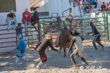 Bull Riding, Cuban Rodeo 9