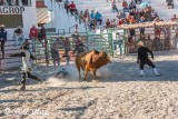 Bull Riding, Cuban Rodeo 12