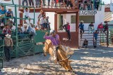 Bull Riding, Cuban Rodeo 14