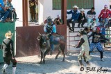 Cuban Rodeo