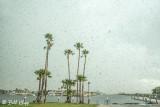 Need Rain, Discovery Bay Marina  2