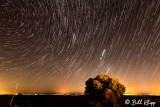 Perseid Meteor Shower  8
