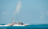 Key West Powerboat Races  71