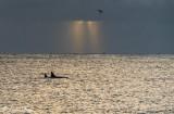 Orca Sunrise  4