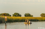 Fishing at Sunset  7