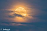 Full Moon, Disco Bay  1