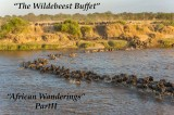 """Wildebeest Buffet"" – All you can eat"