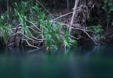 tranquil waters