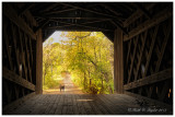 Schofield Ford Covered Bridge, Tyler State Park