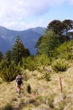 Quinchol Trail
