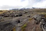Strolling on lava fields