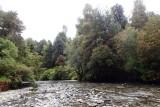 Rio Chanleufú