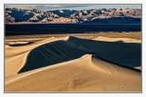 Mesquite Sand Dunes -5