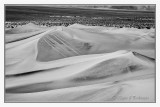 Mesquite Sand Dunes -9