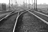 Day 005 Rails