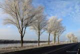 Day 012 Winter Landscape