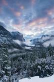 :: Landscapes ::