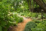 Le jardin discret
