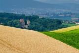 Les champs aux couleurs de l'été