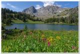 Hilgard Basin, Madison Range, Montana, 2013