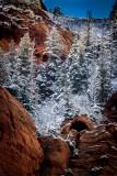 Kolob Canyon Zion National Park